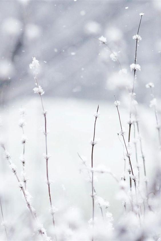 18 Bianco O Nero Meditazione Cromatica