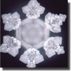 03art_acqua_emoto_courtesy
