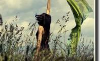 06art_wind