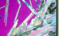 Sovrapposizione quantistica - II