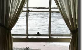 08art_window