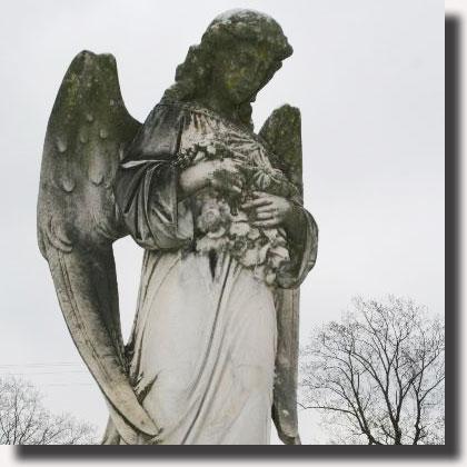 Angeli: forme di coscienza evolute