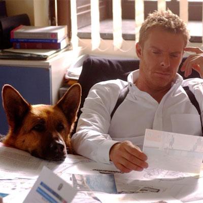 Meno stress se al lavoro c'è anche il cane