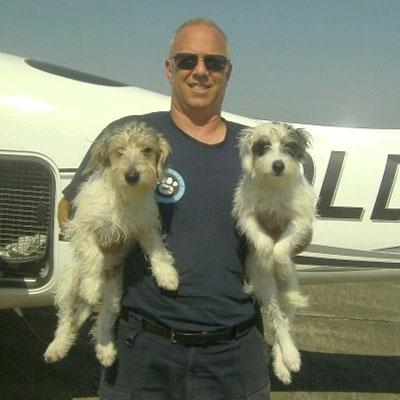 Il pilota di aerei che salva i cani