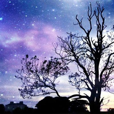 Dicembre 2012: pioggia di stelle