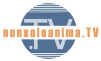 logo_NSA-197x120