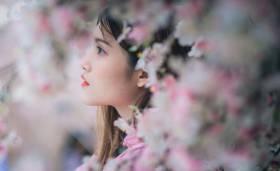 Fiore-anima
